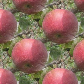 Red Apple Photorealistic Repeat