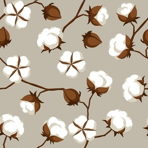 Cotton Boils on Taupe