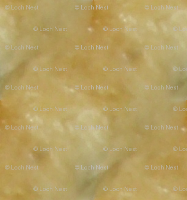 Pie Crust Promise | Photorealistic Neutral Texture