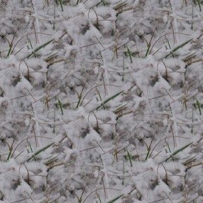 Snowy Grass | Seamless Photorealistic Landscape