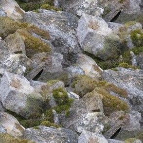 Mossy Rocks | Seamless Terrain Photo Print