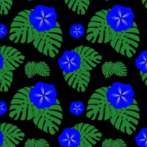 Blue Hibiscus with Monstera on Black