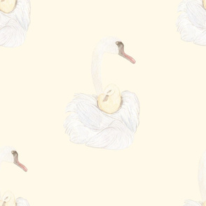 Swan Mom and Child
