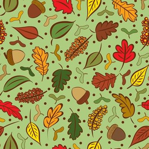 Colorful Autumn Leaves and Acorns