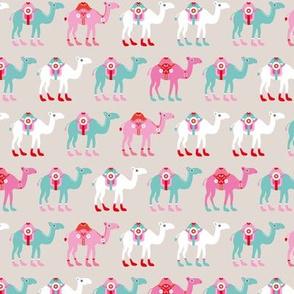 Colorful dromedary arabic summer oriental desert Camel parade  beige blue pink