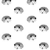 Rhedgehog-3730460_960_720_2_shop_thumb