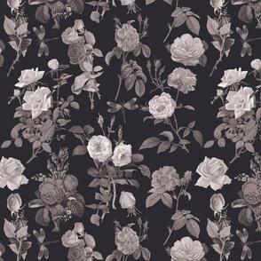 Primrose Path Black and White