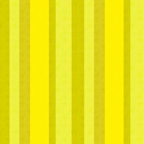 sunny stripes