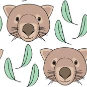 brown wombats-and-eucalyptus