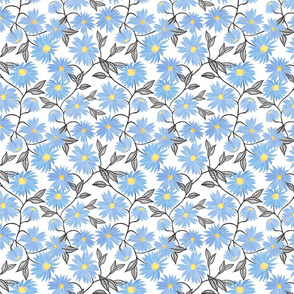 blue daisies fixed 1000 repeat