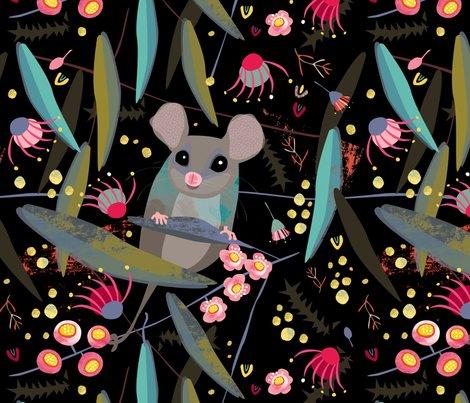 Pygmy_possum_shop_preview