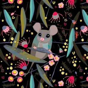 Eastern Pygmy Possum by Mount Vic and Me