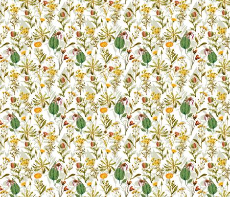 24 Antique Vintage Wildflowers Wallpaper Designed By Utart