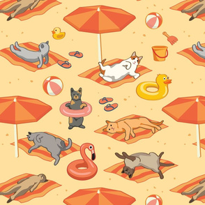 Cats Sunbathing on a Beach Towels