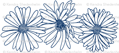 Asters in Three, Ink Drawing, Navy on White