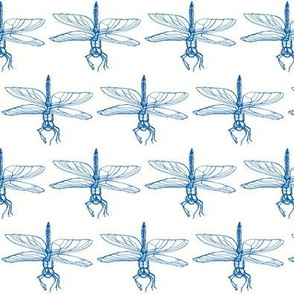 Dragonfly drawing, Deep Blue on White