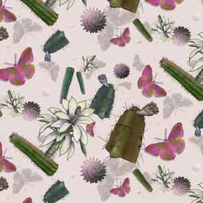 Cindy's Blooming Cactus Flowers & Butterflies