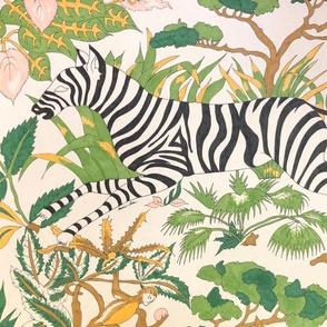jungle boogie: the zebra