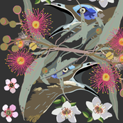 2941-HoneyEater-BlueFaced_1-Charcoal