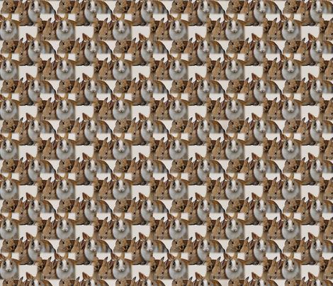 Rabbit Rabbit Rabbit fabric by dogdaze_ on Spoonflower - custom fabric