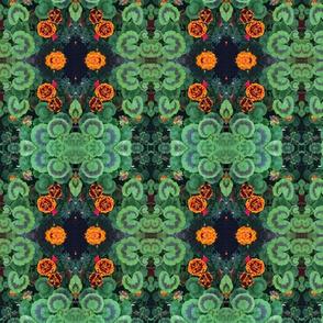 Marigolds in my Garden, 1