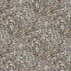 Fennel Seed | Seamless Photo Print