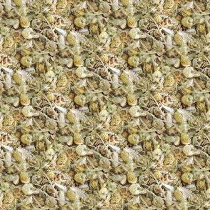Chamomile Tea | Seamless Photo Print