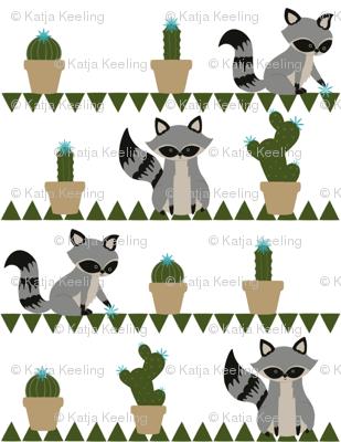 Raccoons & Cacti