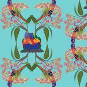 2941-Rainbow-Lorikeet2-Multi-Aqua
