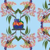 2941-Rainbow-Lorikeet2-Multi-Blue