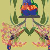 2941-Rainbow-Lorikeet2-Multi-Lime
