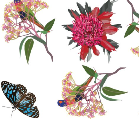 2941-rainbow-lorikeet2-waratah-butterfly-zero_shop_preview