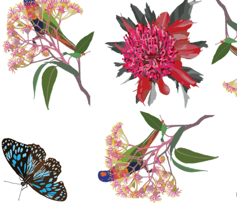 2941-Rainbow-Lorikeet2-Waratah-Butterfly-Zero fabric by jennieholtsbaumdesign on Spoonflower - custom fabric