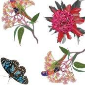 2941-rainbow-lorikeet2-waratah-butterfly-zero_shop_thumb