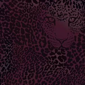 Leopard goes in to the night