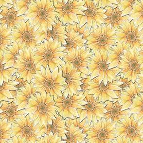 Hand-drawn Sunflower Allover