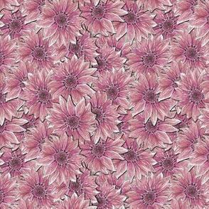 Pink Sunflower Allover