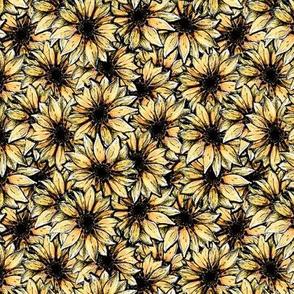 Dark Edged Sunflower Allover