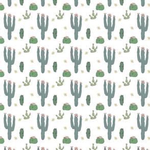 Cactus 150 DPI