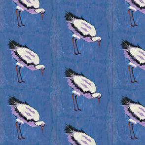 sea tern