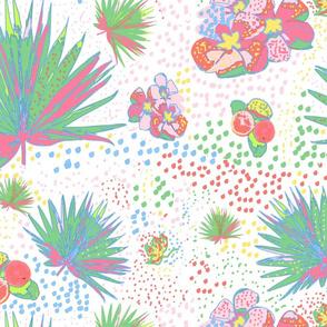 josef meet lilly soft pastel