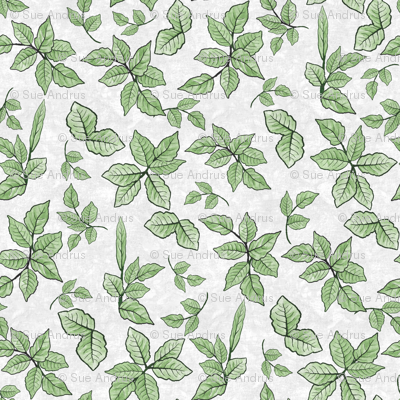 Scattered Foliage