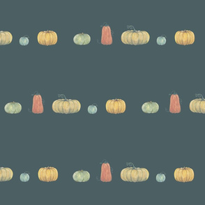 pumpkins in a row on white on smalt blue
