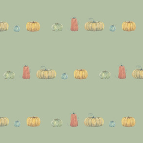 pumpkins in a row on sprout green