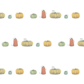 pumpkins in a row on white