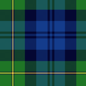 "Gordon Highlanders tartan, 14"" modern colors"