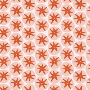 Tomato Tomahto | Pink