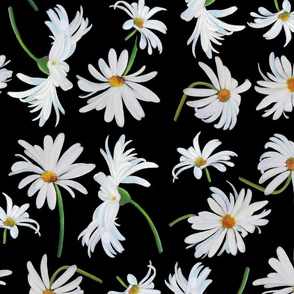 Daisies - Large