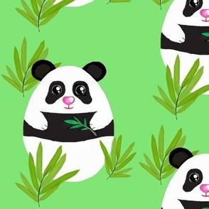 Meditation  Panda-Bamboo on Green