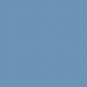 Dots denim 092518